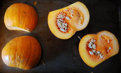 pumpkinpie8