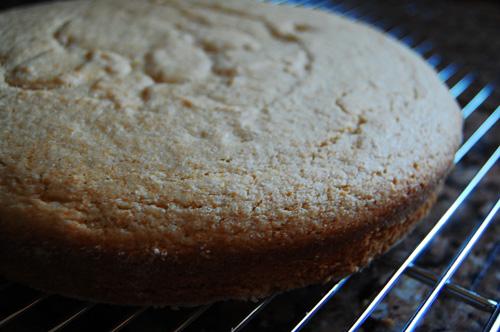 cornmeal-cake2