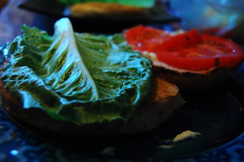 fchsandwich1