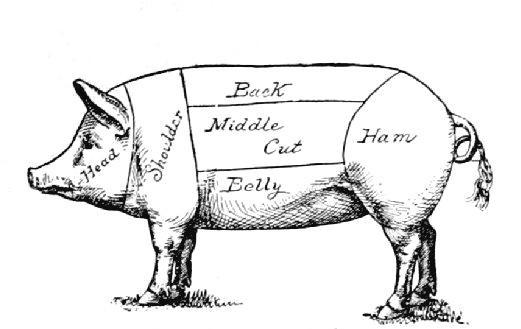 Image result for carolina style bbq pig pickin