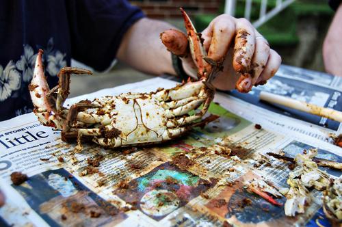 picking crabs s4