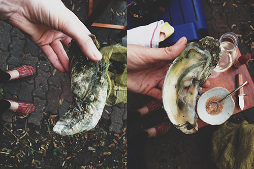 onslow oysters 10