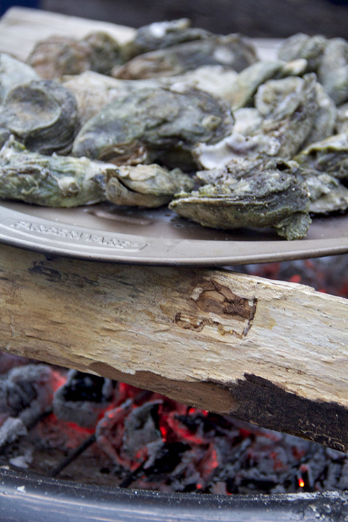 onslow oysters 2