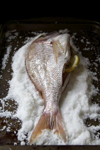 salt packed fish 7