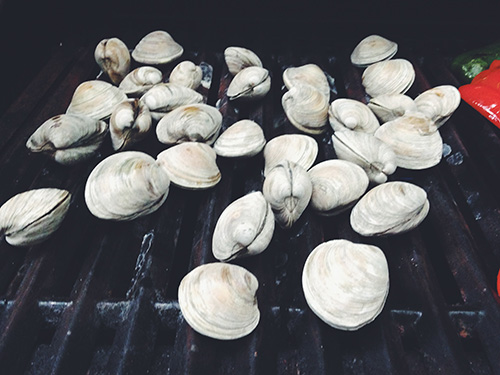 grilled clams 3