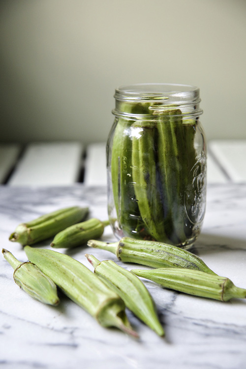 garlicy pickled okra 1