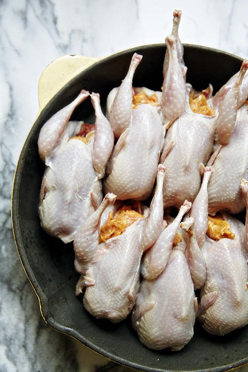 quail 6