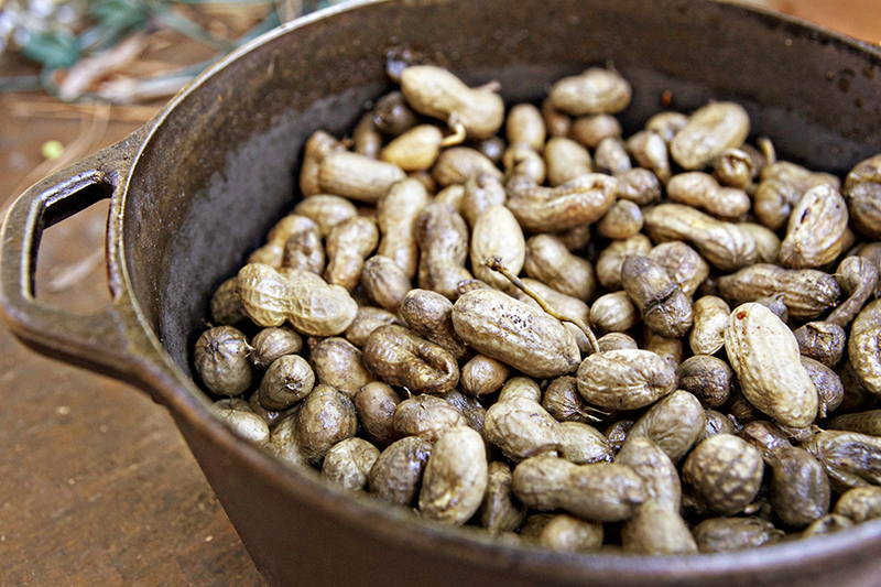 spicy boiled peanuts 2