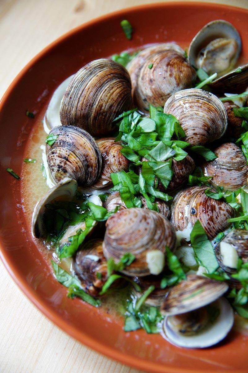 clams 1